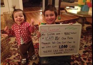 Отец проспорил детям кошку благодаря пользователям Facebook