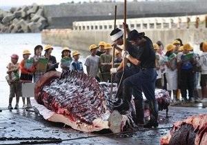 Япония намерена кормить школьников китовым мясом