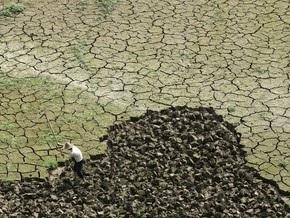 Исследование: угрозу мирового голода усиливает деградация почв