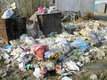 Британцы ежегодно выбрасывают в мусор 3,6 млн. тонн продуктов