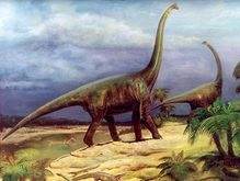 Динозавры процветали на протяжении 100 млн лет по счастливой случайности