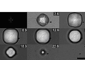Физикам удалось получить квадратные пузыри