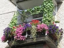 В Киеве определен самый красивый балкон