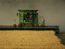 ВБ: Продовольственный кризис закончится в 2015 году