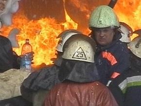 В Киевской области задержаны поджигатели леса