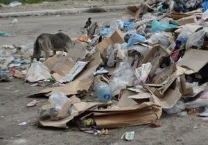 В Свободе предлагают штрафовать за мусор на улицах