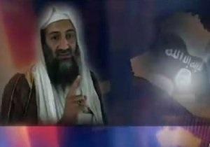 Сенаторы США прекратили расследование пыток в фильме про бин Ладена