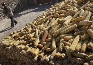 Украина отрицает возможность попадания в Германию содержащей диоксин кукурузы