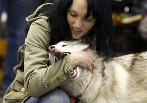 Рада отказалась ввести штрафы и уголовную ответственность за собачьи укусы