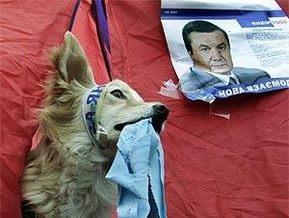 В горсовете Севастополя образовалась депутатская группа За Януковича!