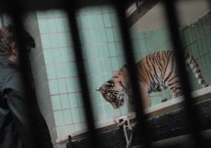 Киевский зоопарк приглашает на работу добровольцев