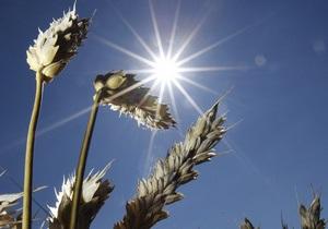 НГ: Зерновой пул не с ТС, а с ЕС