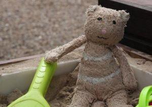 Игрушечный медвежонок стал звездой  Facebook