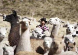 В Перу объявили ЧП в связи с аномальными холодами