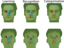 Ученые: Азиаты и европейцы по-разному смотрят на лица