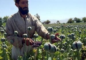 Душанбе предлагает выкупать опий у афганских фермеров