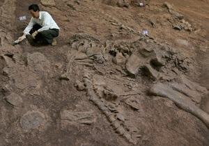 В Китае обнаружили останки беременного динозавра