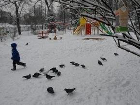 В киевских парках появятся зоны для зимнего отдыха