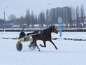 Сегодня в Киеве состоялись конные скачки на Кубок мэра