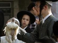 Израильтяне выбирают кошерную технику