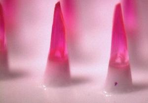 Американские ученые нашли способ делать прививки без уколов