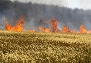 Эксперт: Цены на зерно в Украине существенно выросли после запрета на экспорт в России