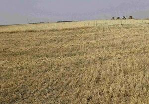 Правительство добилось стабилизации цен на зерно