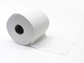 Экологи: Пользуясь туалетной бумагой класса люкс, американцы стали врагами экологии
