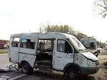 ДТП В Житомирской области: 11 погибших