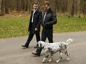 В Кремле появился преемник Путинского лабрадора Кони