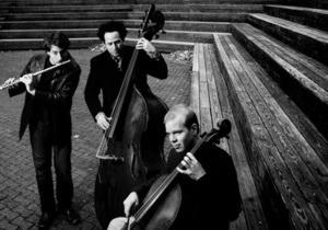Сегодня Киеве выступят YouTube-звезды PROJECT Trio
