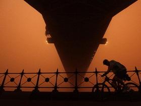 В результате пыльной бури в Индии погибли более 40 человек