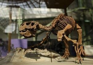 В Китае обнаружены останки неизвестного динозавра