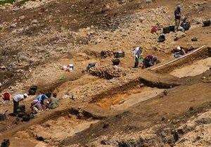 В Аргентине обнаружены останки самых старых наземных растений