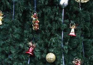 В киевской мэрии установили живую елку с красными бантами