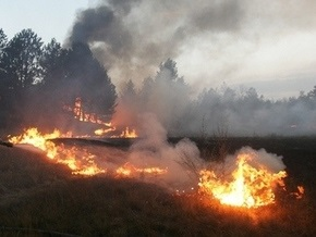 В Киевской области горело 100 га молодого леса