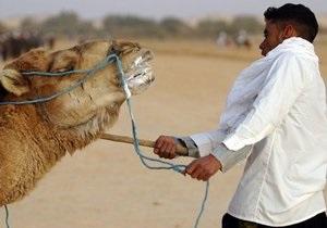 Египетские погонщики верблюдов пригрозили заблокировать правительство и дороги
