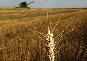 Ъ: Ставка налога на землю в Украине вырастет в три раза