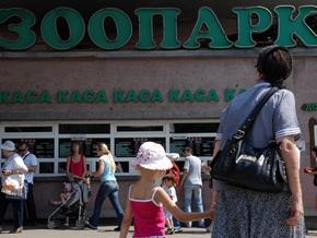 Гендиректор Киевского зоопарка опроверг информацию об избиении сотрудника
