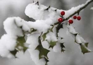 В Австрии сильный снегопад парализовал железнодорожное сообщение