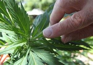В США арестованы две пенсионерки, подозреваемые в выращивании марихуаны