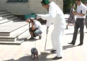 Запустили свинью. Недовольные аварией Протона казахские активисты привели к зданию Генконсульства РФ поросенка