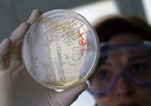 Ученые создали дисплей из кишечной палочки