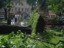 Во Львовской области остаются обесточенными 157 населенных пунктов