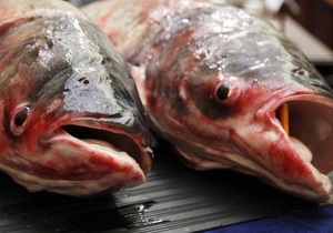 Экологическая прокуратура изъяла на рынках Киева 600 кг незаконно выловленной рыбы