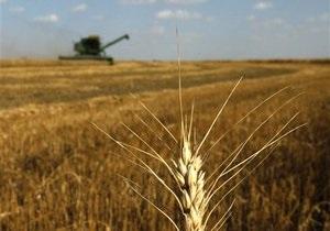 В Киеве признали, что Украина, РФ и Казахстан не могут создать зерновой пул