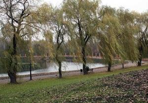 В Киеве машина-амфибия очистила исток реки Лыбидь от камыша и водорослей