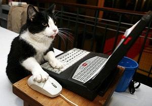 В Британии кот устроил сюрприз хозяину, вызвав по телефону полицию