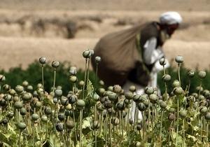Войска коалиции уничтожили крупную сеть наркодилеров в Афганистане