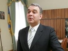 Тимошенко просит депутатов назначить главой АМКУ Жванию